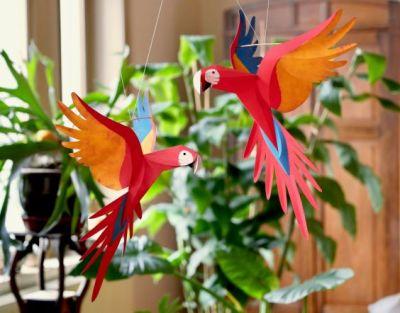 perroquets